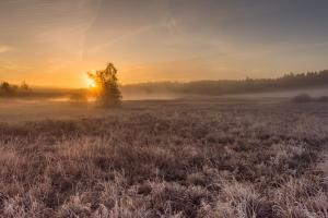 Sonnenaufgang Weiherwiesen
