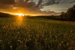 Sonnenuntergang in der Nähe von Fridingen