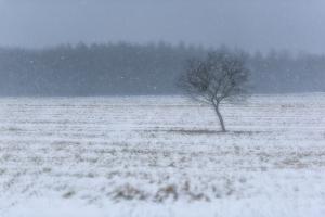 Wintereinbruch auf der Albhochfläche