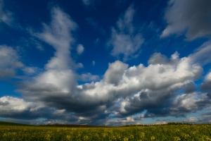 Raps und Wolken auf der Albhochfläche