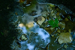Falkensteiner Höhle, letztes Wasser der Elsach
