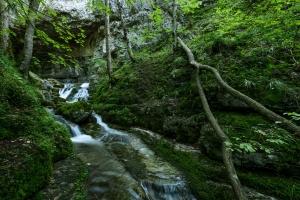 Falkensteiner Höhle, Elsach