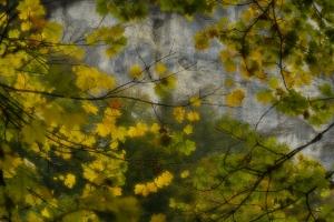 Herbstfarben an den Rutschenfelsen
