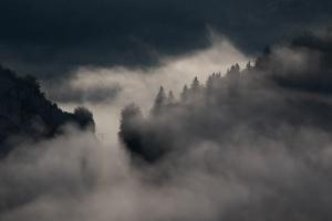 Nebel bei Fridingen