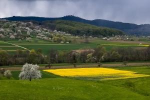 Frühlings-Landschaft bei Owen