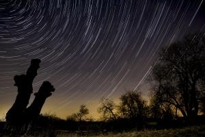 Sternennacht an der Schinderwasenbuche