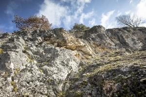 Alter Steinbruch /Kleines Lautertal