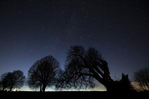 Sternennacht an der Dettinger Linde