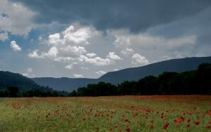 Landschaft bei Weilheim