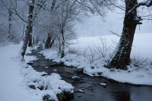 Brühlbachim Winter, Bad Urach