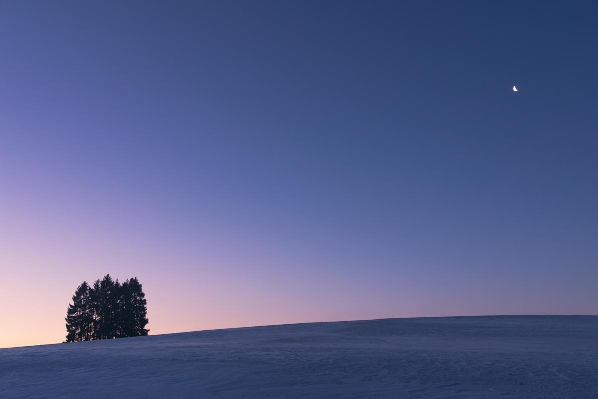 Baumgruppe mit Mond bei Eglingen