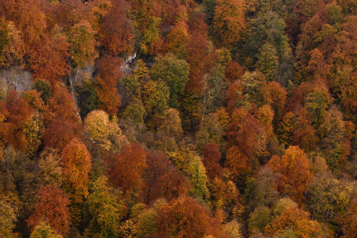 Herbstfarben am Uracher Wasserfall