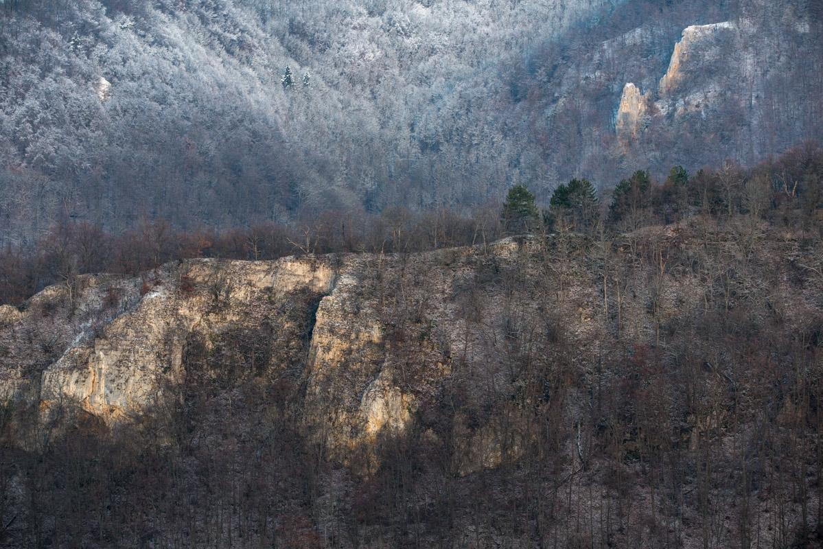 Felsen und Wald