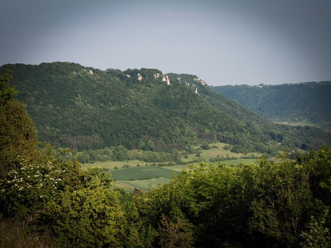 Reichenbach im T_le-2.jpg