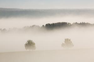 Morgennebel bei Mundingen