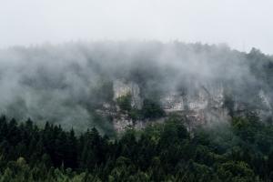 Gräbelesberg im Nebel