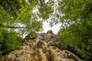 Felsenmeer bei Albstadt-Laufen