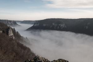 Dichter Nebel im Donautal