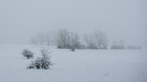 Kaltes Feld