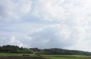 Meteorkraterrand bei Steinheim am Albuch