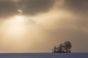 Kampf zwischen Sonne und Schneewolken bei Bremelau