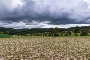 Steiniges Albfeld auf dem Digelfeld