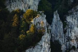 Felsformation im Donautal