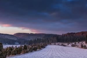 Winterliches Feld im Digelfeld bei Hayingen
