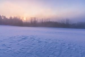 Winterlicher Sonnenaufgang durch den Nebel