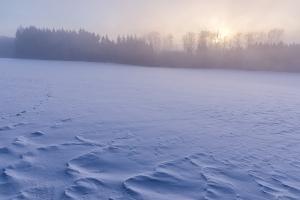 Schneedecke bei Eglingen bei nebligem Sonnenaufgang
