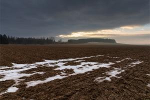 Schneereste auf einem Alb-Feld