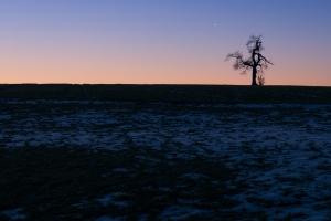 Albfeld mit letztem Schnee