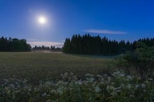 Vollmondnacht auf den Hülenbuchwiesen III
