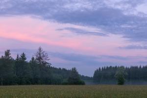 Blaue Stunde auf einer Wiese im Irndorfer Hardt