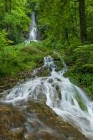 Uracher Wasserfall im Grün - Hochformat