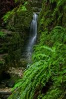 Wasserfall aus der Wolfsschlucht