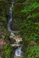 Wasserfall aus der Wolfsschlucht IV