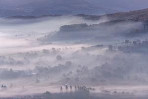 Nebel im Albvorland