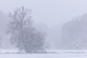 Schneefall im großen Lautertal