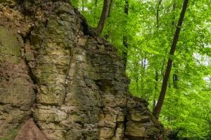 Alb-Felsen beim Bauerloch