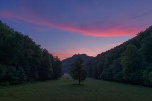 Brühlbachtal im Morgenrot