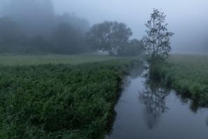 Nebelmorgen an der Fehla
